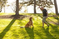 lifestyle-man-dog-ball-park